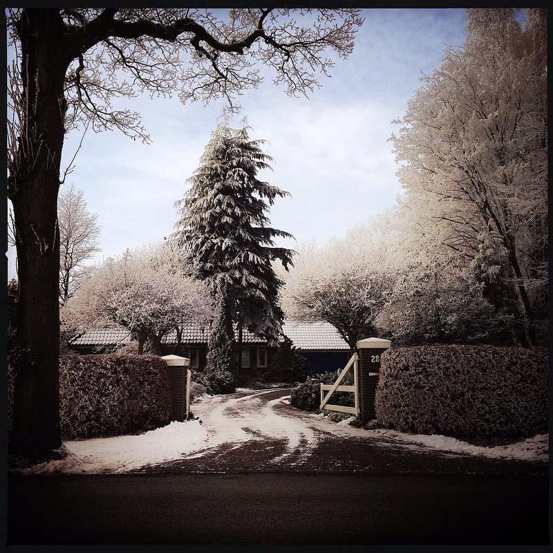 beautiful Dutch winter