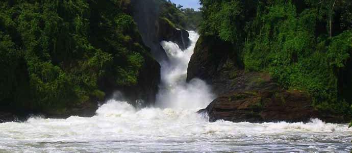 Uganda national parks murchison falls national parks