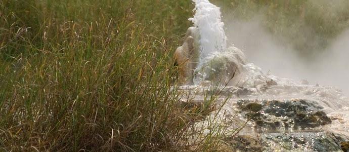 uganda national parks semliki national park