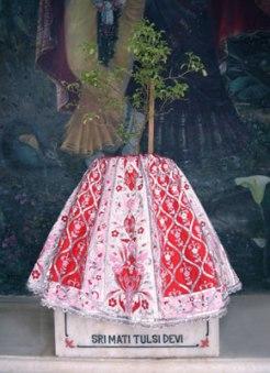 Sri Mati Tulasi Devi