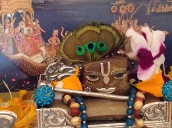 23 November - Mayapur (3)