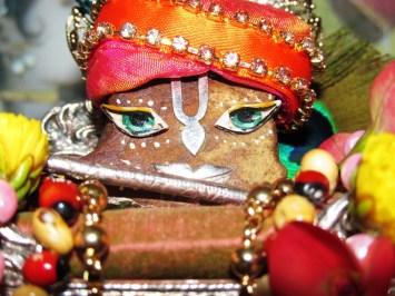 25 December - Mayapur (1)