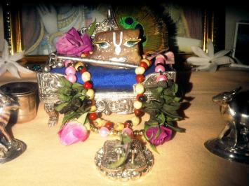 27 November 2012 - Mayapur (2)