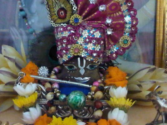 5 February - Mayapur (2)