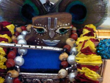 9 February - Mayapur (2)