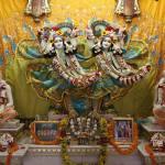 Vrindavan, February 2017: Videos