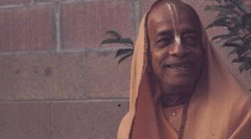 Have you met Srila Prabhupada?