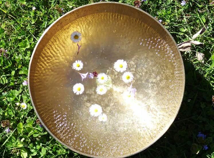 Gänseblümchen im Klangbad