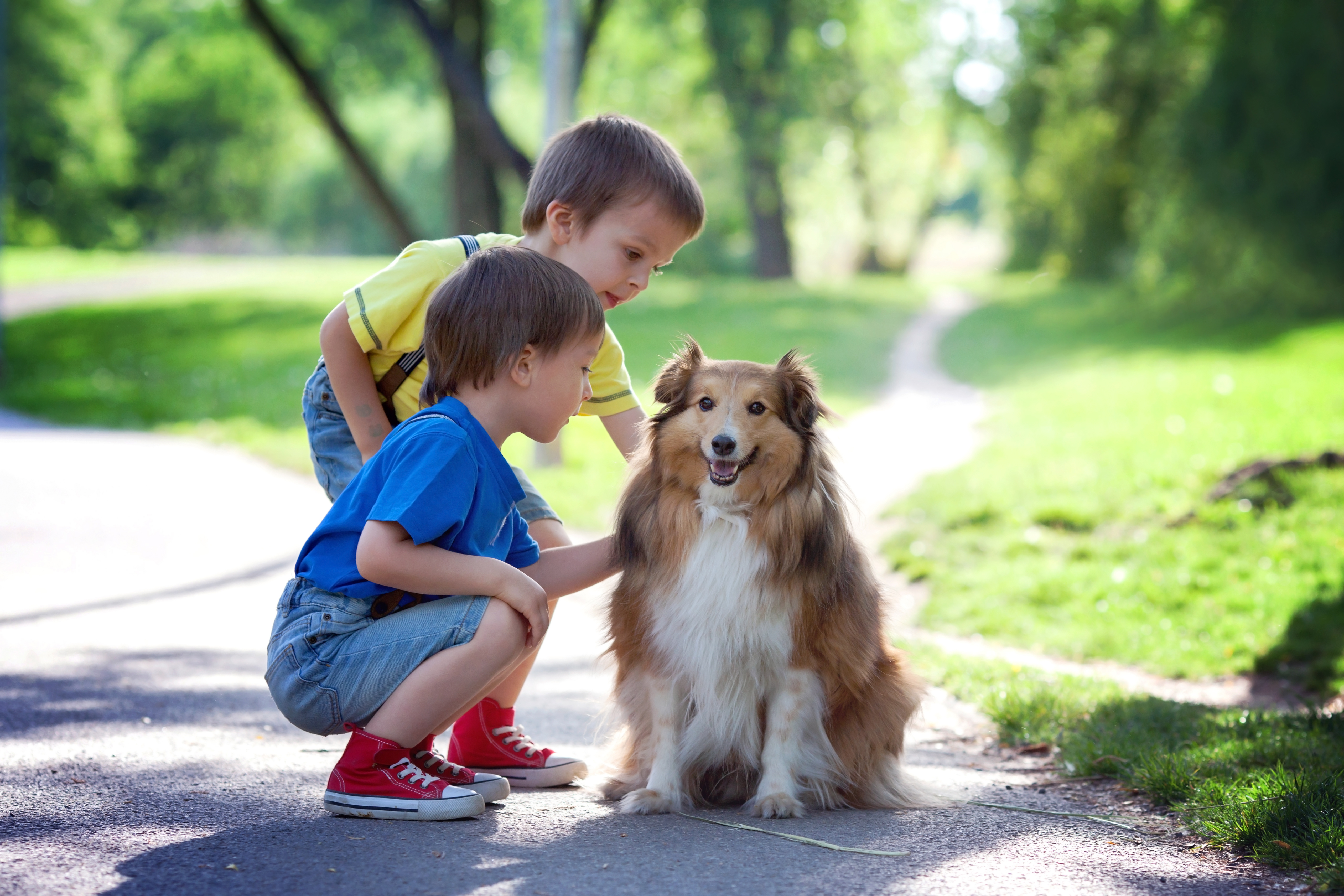 Ways To Help Your Child Learn About Animals