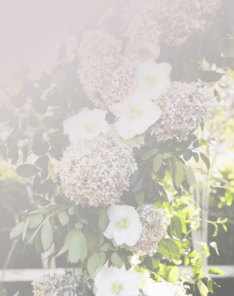 Dekoracja z bzu | Dekoracje ślubne Chojnice dekoracje weselne chojnice Strona Główna wedding planner 21 1