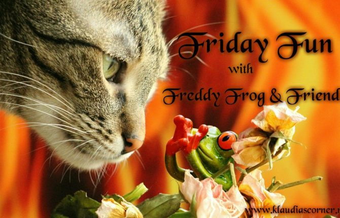 Friday Fun From 'Freddy Frog' & Friends