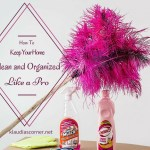Keep Your Home Clean and Organized Like A Pro – A Complete Guide For The Busy Lady