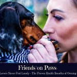 Friends On Paws – Why Animal Lovers Are Never Lonely