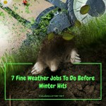 Outdoor Home Decor & Maintenance Tips – 7 Fine Weather Jobs To Do Before Winter Hits