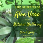 The Benefits Of Aloe Vera For The Skin, The Body & Your Natural Wellbeing