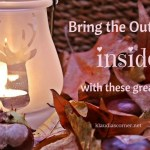 Your Garden & You – Bring The Outdoors Inside This Winter With These Great Tips