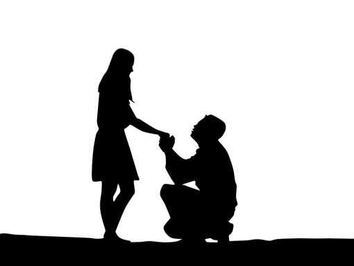How to Propose to the One you Love