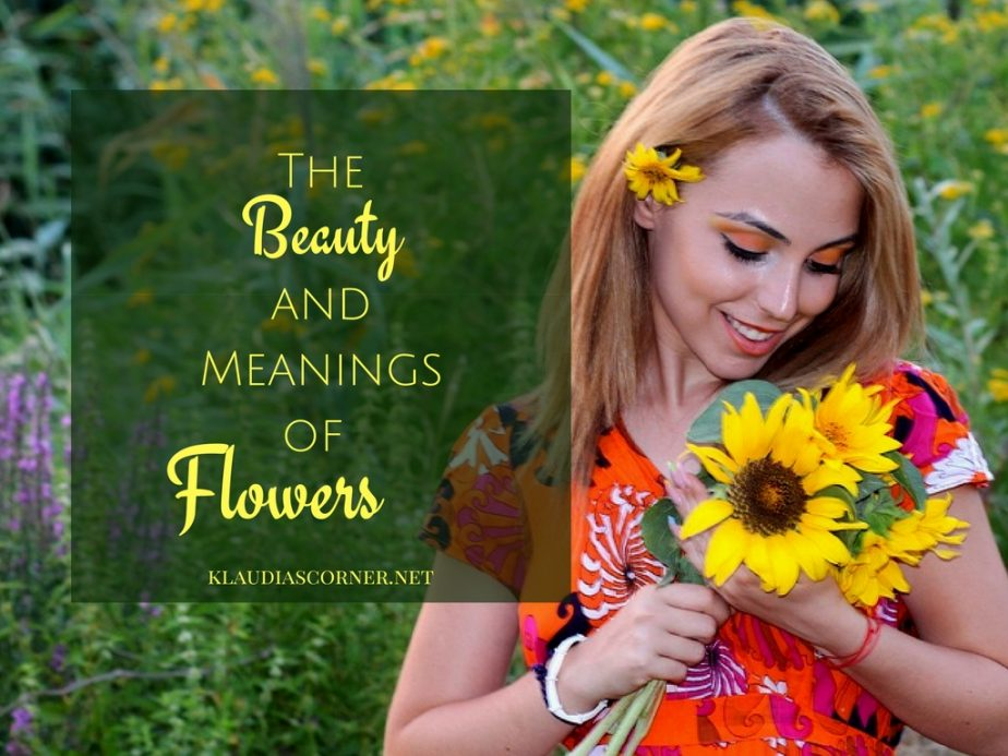 World of Flowers-The Beauty of Flowers and their Meanings