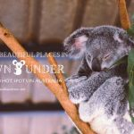 The Most Beautiful Places in Australia – 5 Vacation Hot Spots in Down Under