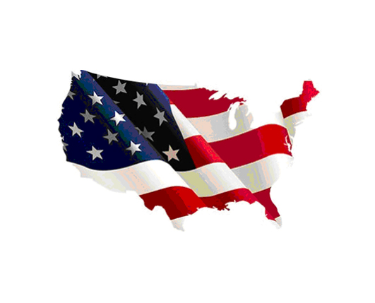 BUILDING SUSTAINABLE BUSINESS IN THE USA