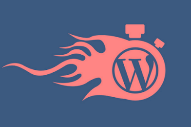 How to Find the Fastest WordPress Hosting?