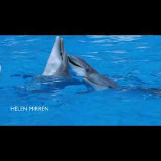 screenshot delfini addio e grazie per il pesce inizio guida galattica per autostoppisti