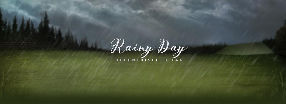 equinepassion_background_rainy_day