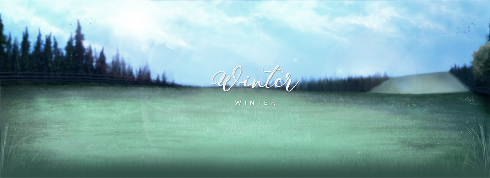 equinepassion_background_winter_day