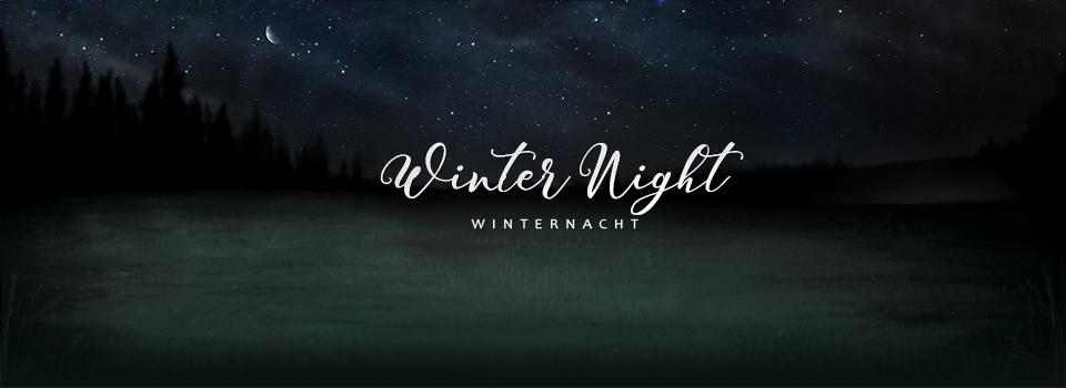 equinepassion_background_winter_night