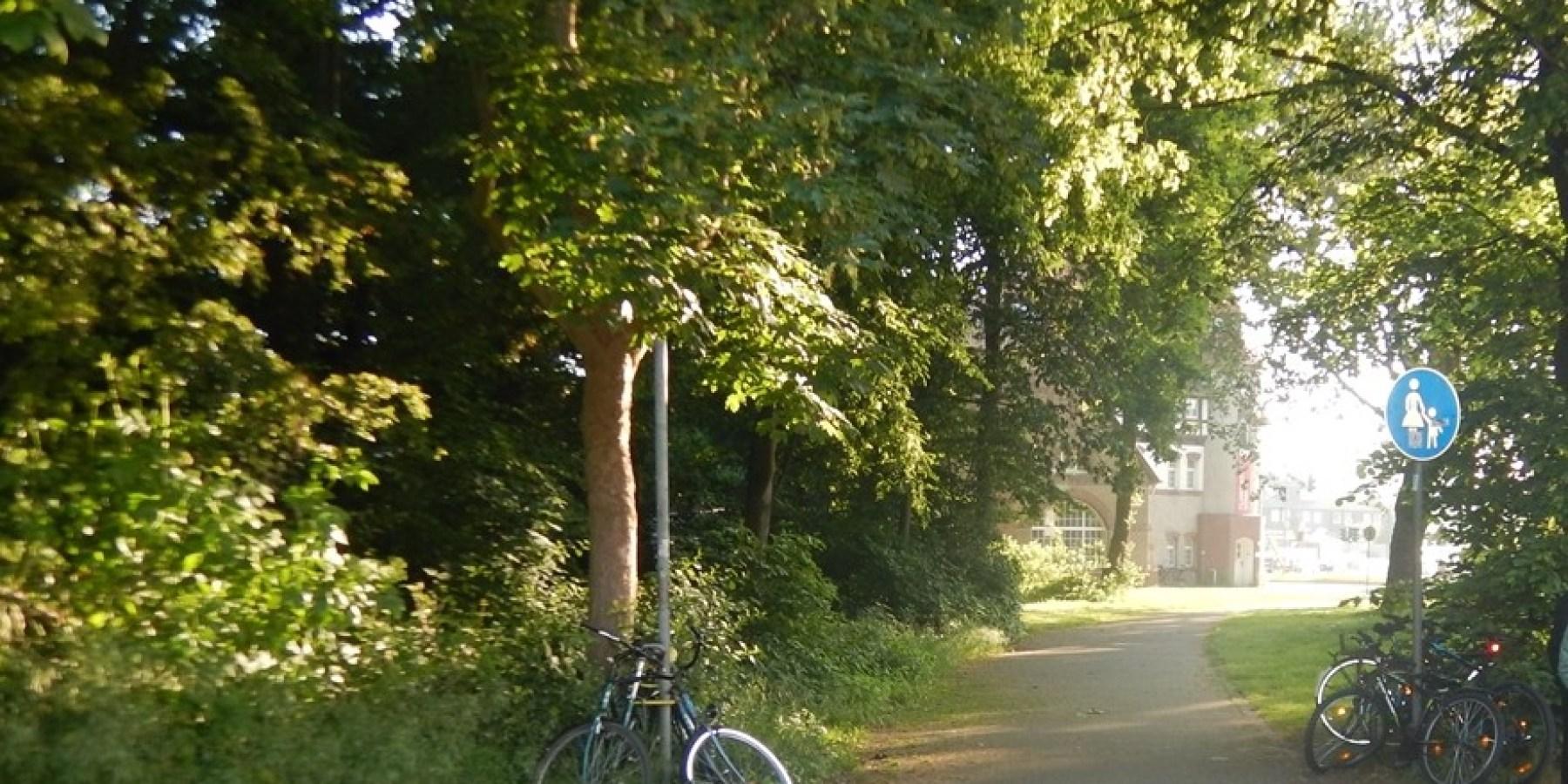 Doppeltes Fehlverhalten von Radlern – Zwei Fahrradfahrer schwer verletzt