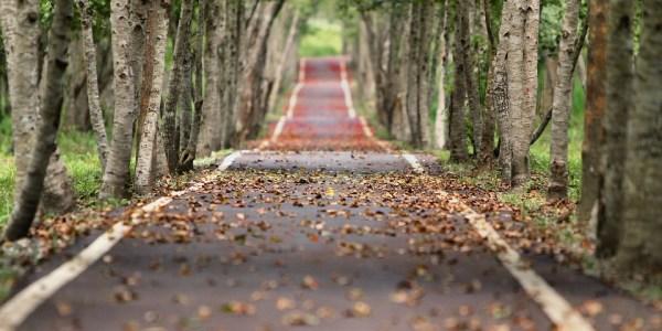 Industrieweg: Instandsetzung Radweg