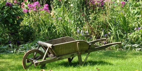 Vortrag über insektenfreundliche Gärten