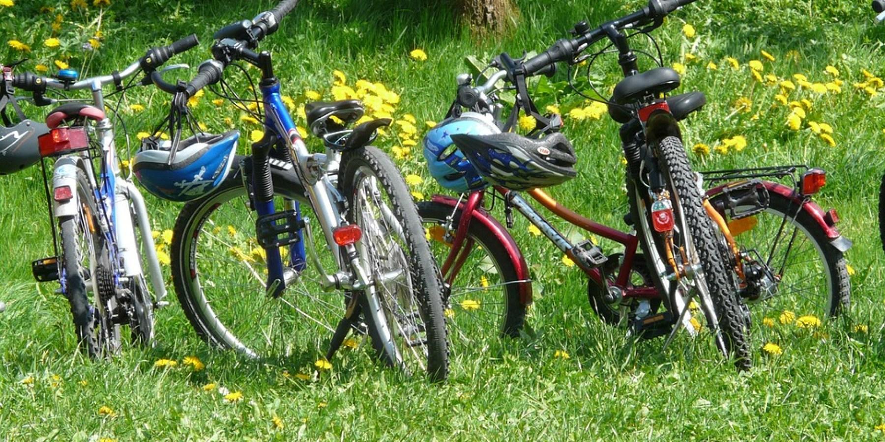 Aufmerksamer Zeuge ruft Polizei – Fahrraddiebe auf frischer Tat gestellt
