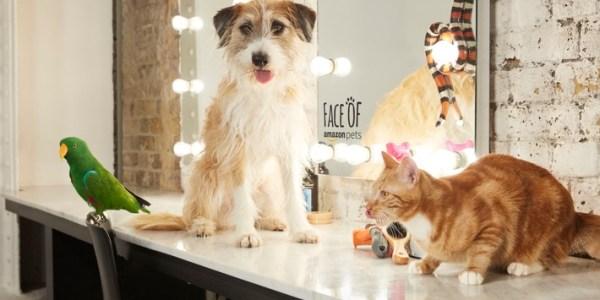 Face of Amazon Pets Social-Media-Challenge für Haustierbesitzer