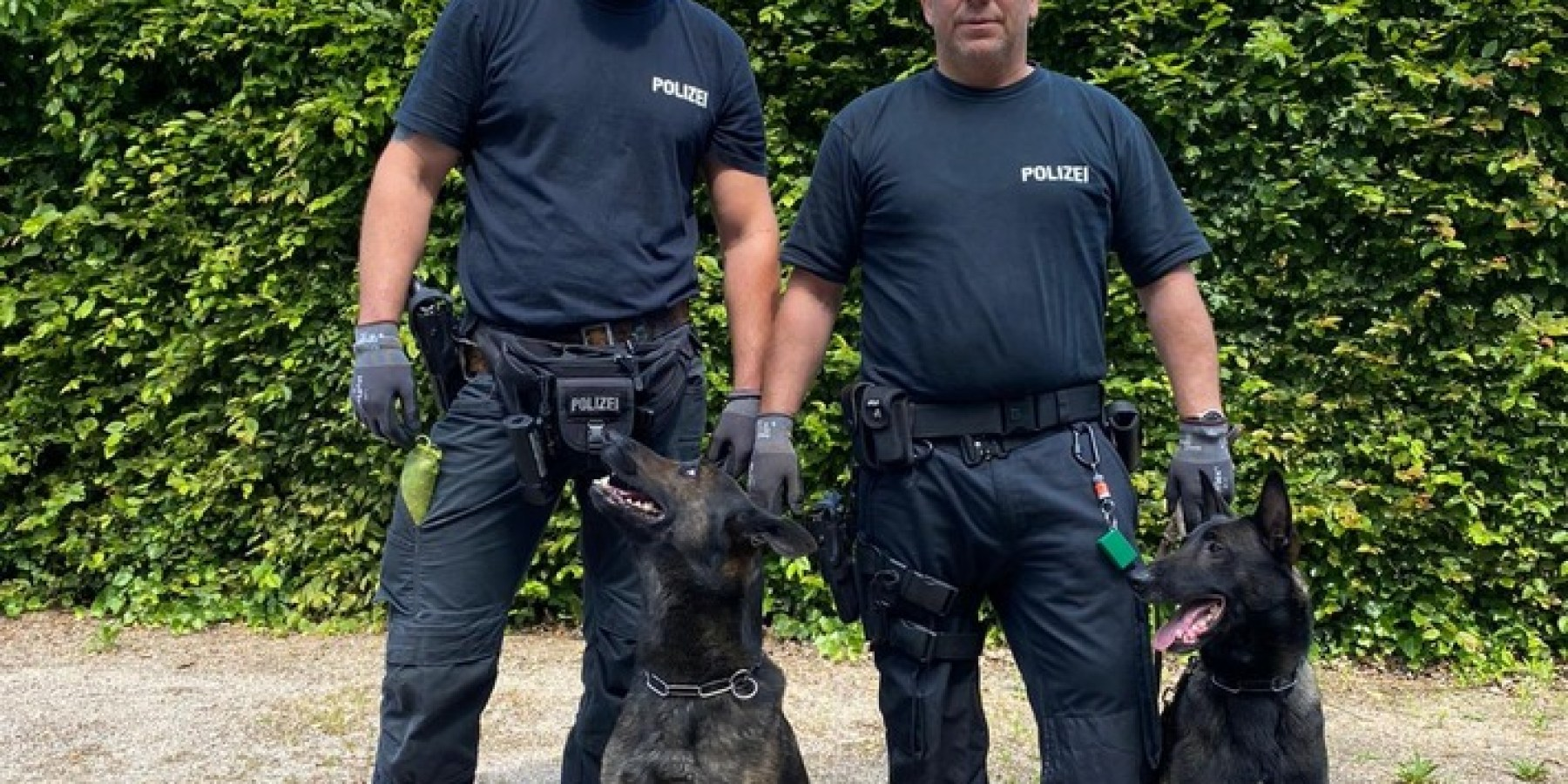 """Datenspeicherspürhund """"Theo"""" findet verstecktes iPad und USB-Stick in Wohnung der 45-jährigen Beschuldigten in Münster"""