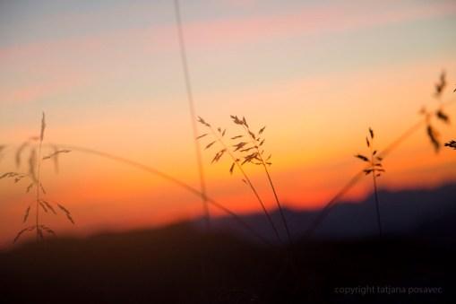 Flammend oranger Sonnenaufgang