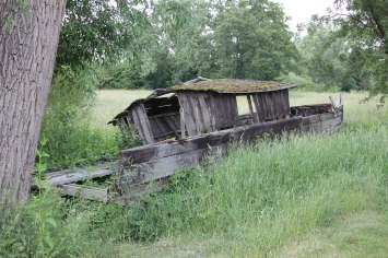 Alte Holzplätte