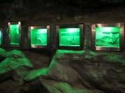 In der Höhle!
