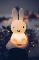 Mr Maria Miffy Nachtlicht Bundle of Light kaufen   Kleine ...
