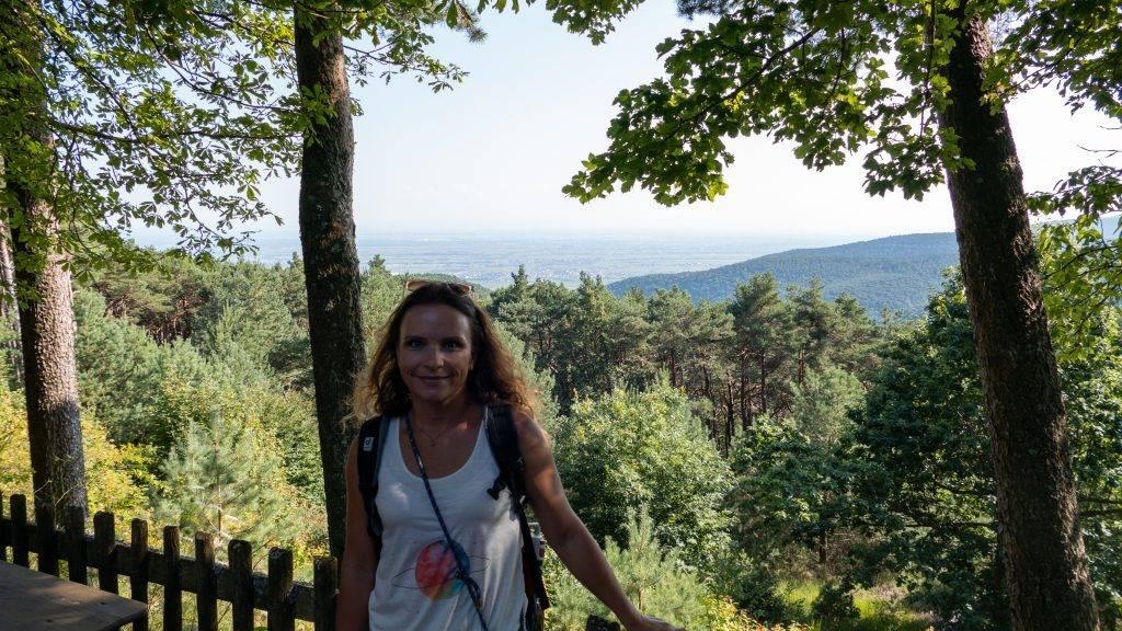 Ausblick Rheinebene Hohe Loog