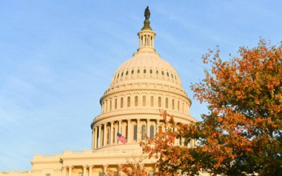 Cotton, Rubio, Colleagues Introduce FDIC Act to Combat Banks' Political Attacks on Federal Contractors