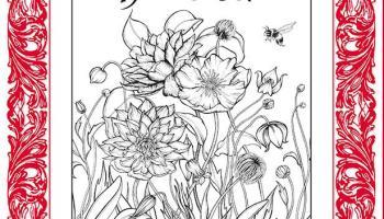 Kleurplaten Voor Volwassenen Handen.Zin In Kleuren Deel 1 Het Mooiste Kleurboek Voor Volwassenen Met