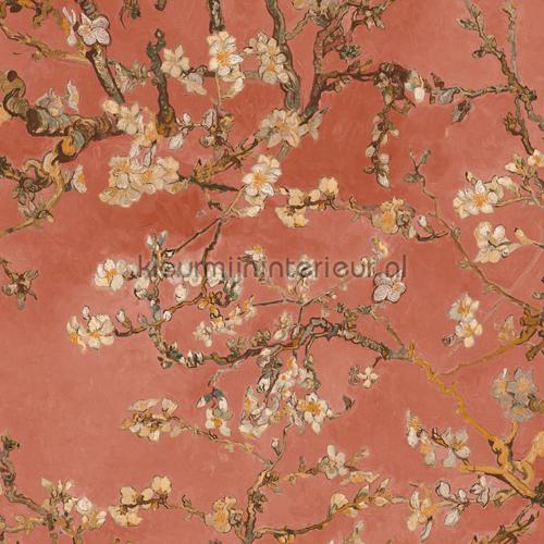 Carta da parati con fiori di ciliegio. Almond Blossom Blush 17147 Carta Da Parati Van Gogh Bn Wallcoverings