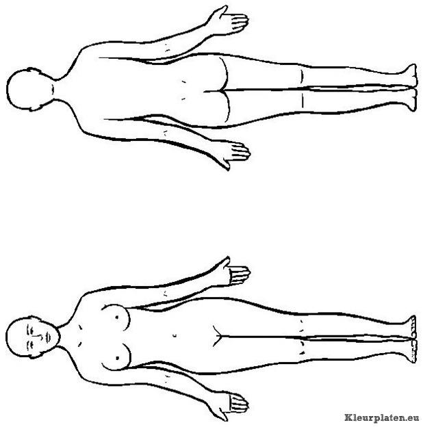 Menselijk lichaam kleurplaat 781870 kleurplaat