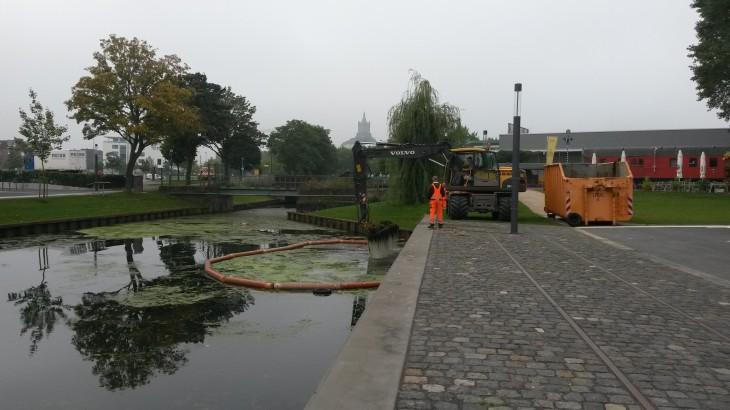 Die Umweltbetriebe der Stadt Kleve treiben das Problem vor sich her… (Foto: