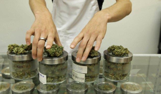Legal Marijuana-Oregon_122096