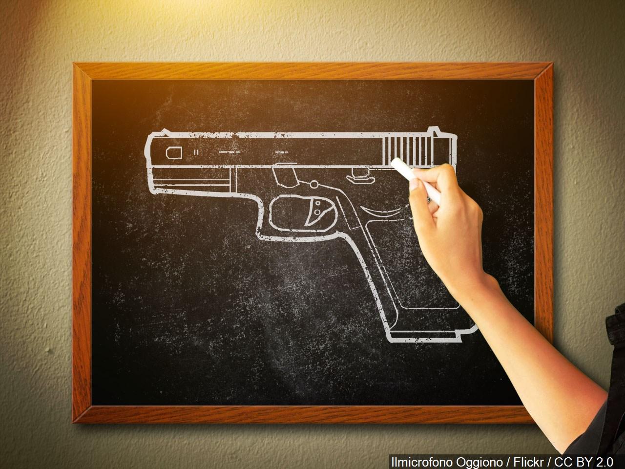 guns in schools_1525368083837.jpg.jpg