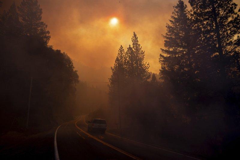 Wildfire_1541995833915.jpeg