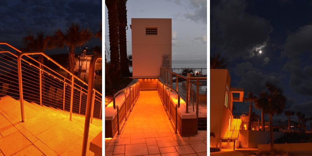 integrating lighting with wildlife