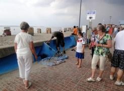 Das meterlange besprühen der Flutmauer mit visualisiertem Meeresspiegelanstieg gehört zu den Publikumsmagneten an diesem Wochenende (Foto: C.Koch)